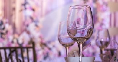 Wine and Streetfood Festival