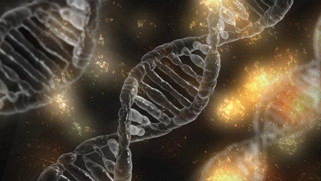 Genetica europenilor descoperită de cercetători
