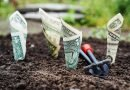 TOP 10 fermieri care au primit cele mai multe subvenții de la APIA