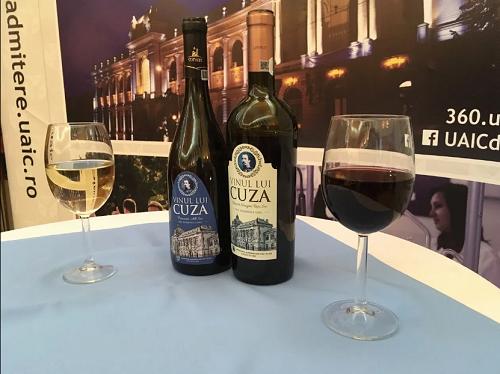 Vinul lui Cuza va fi produs la un conac din Ștefănești